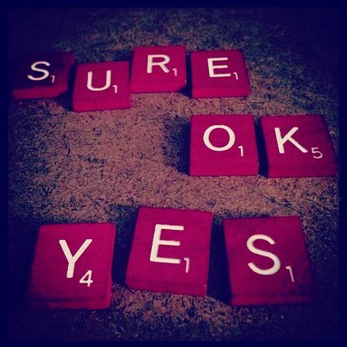 #fmsphotoaday November 7 - Yes!