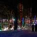 Notre-Dame-du-Cap. Les jardins de lumière 2013.