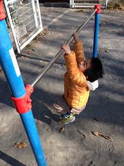 鉄棒するとらちゃん 2013/12