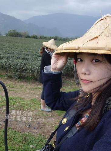 農遊台東002.jpg