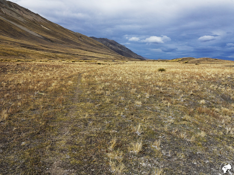 Steppe du Mackenzie Country