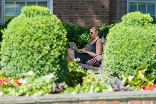 summer students studying dartmouth academics sanbornhouse