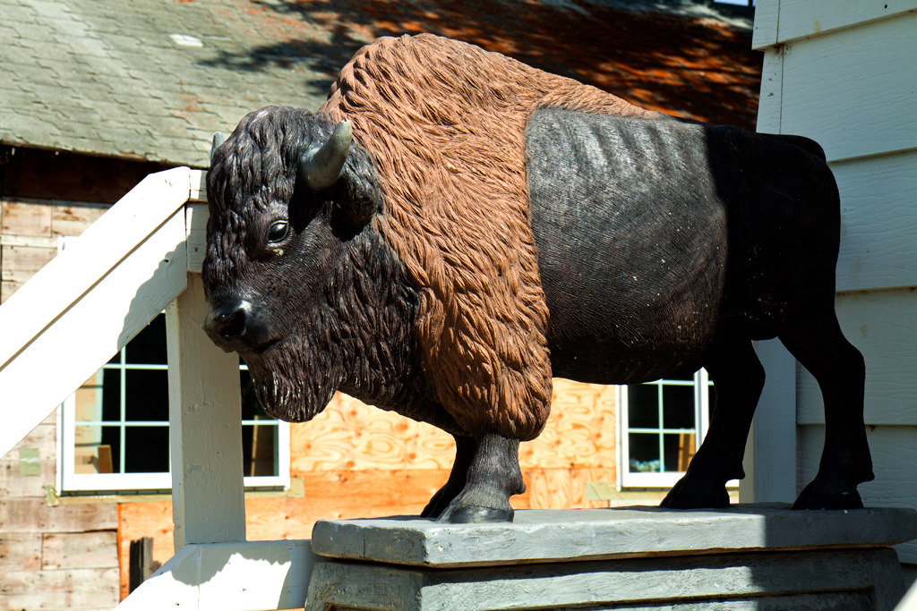 Buffalo--Williston