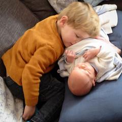 Wilfie cuddling Margot