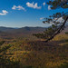 View from Pilot Rock, Pisgah National Forest, North Carolina by netbros