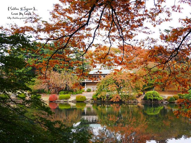 日本東京自由行新宿御苑庭園景點 (44)
