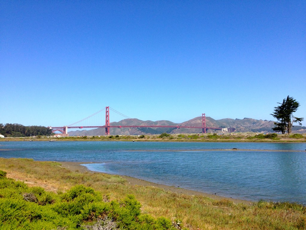 Crissy Field Marsh & Golden Gate Bridge