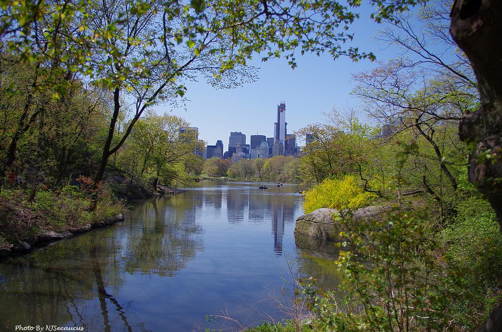 什麼?Kit Lens要帶我們遊中央公園?〈上〉