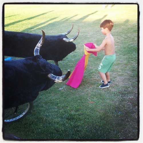 #Boceguillas #encierro #infantil #bull #toro #Boy #Segovia #corrida