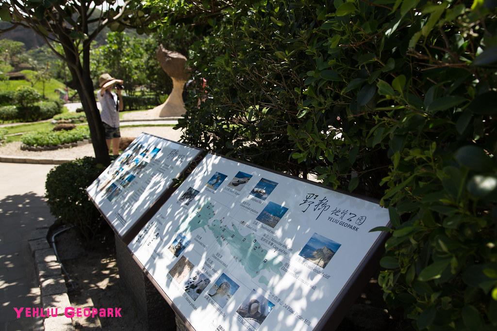 有點野|柳(Yehliu Geopark)