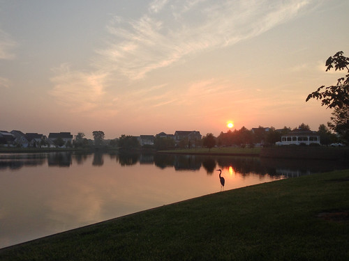 lake sunrise day clear stork robbinsville