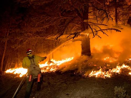 A Forest Service firefighter battles a wildland fire. (U.S. Forest Service)