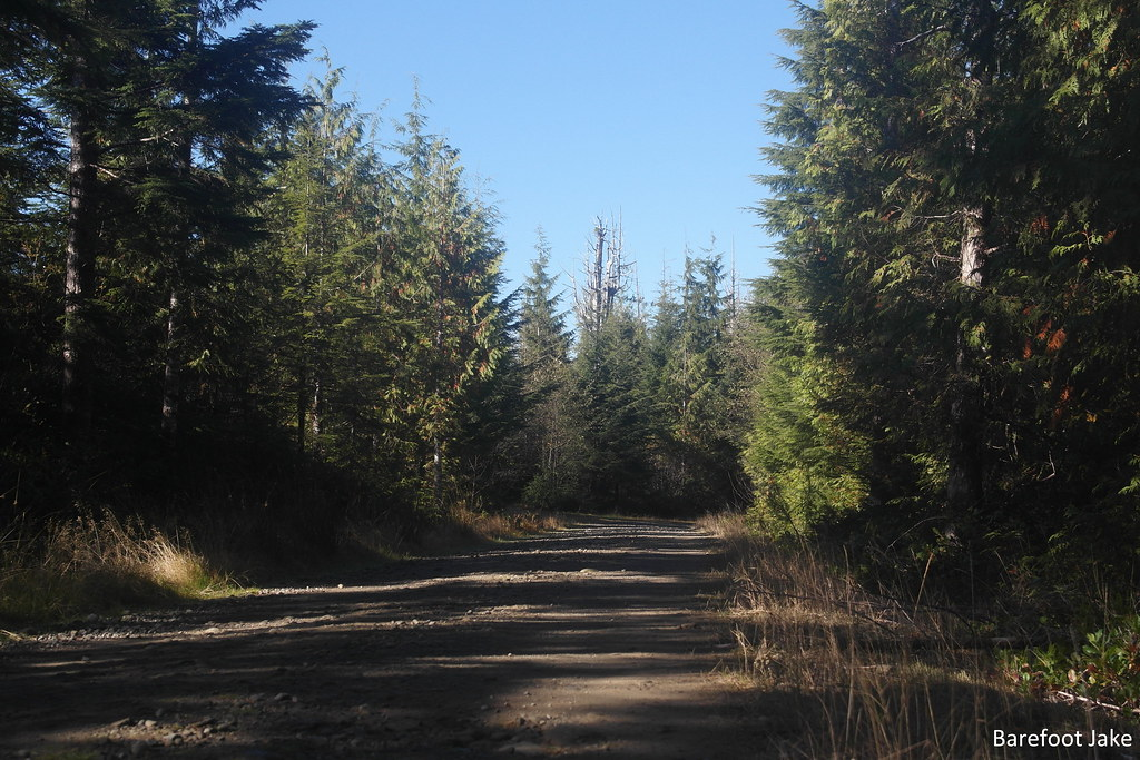 pacific northwest trail road walk