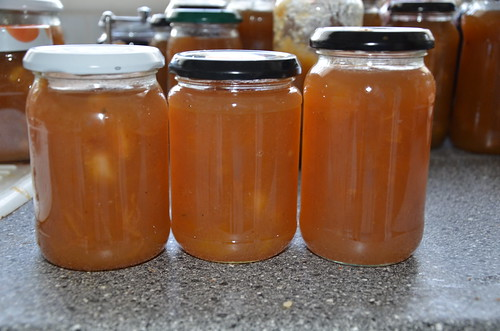 pumpkin and apple jam Oct 13 2