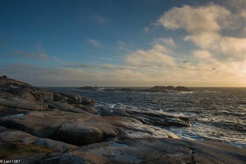 autumn sea seascape nature water norway nikon sandefjord vestfold nikonqualitycontrolsucks