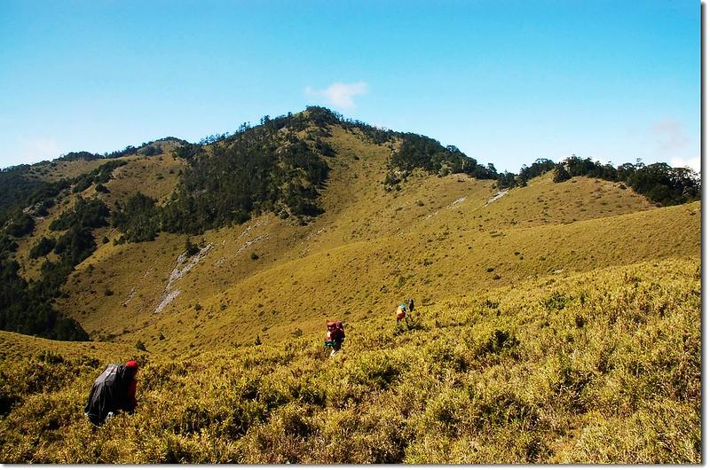 博可爾草原