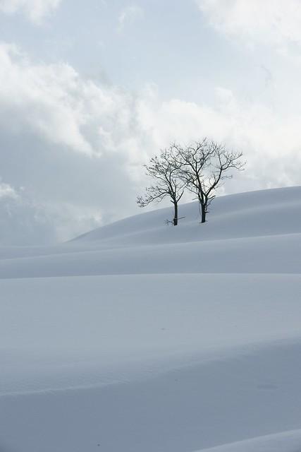 冬の終わりに2