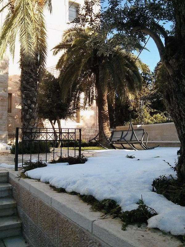 Snow in Jerusalem 2013 - Lehi
