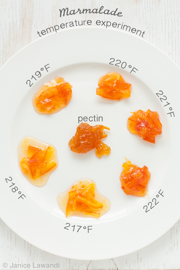 dollops of marmalade cooked to different temperatures | kitchen heals soul