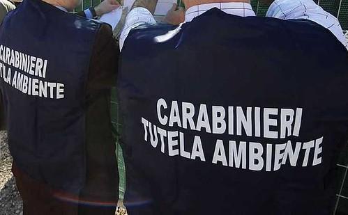 carabinieri noe 02