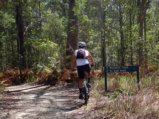 Eumundi Forest Trails
