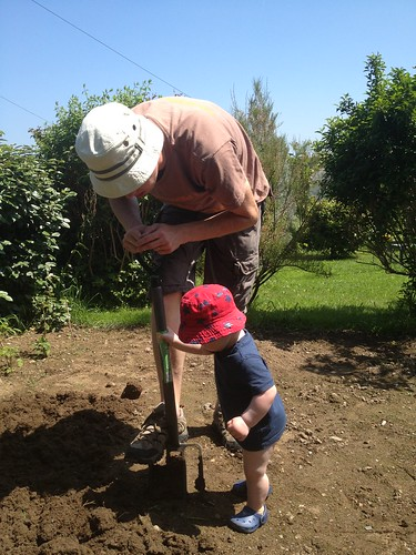 Digging with Daddy