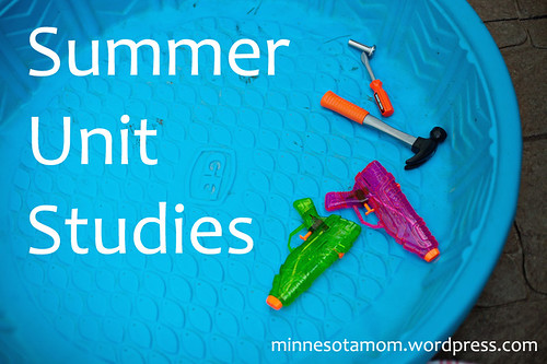 summer 2014 unit studies