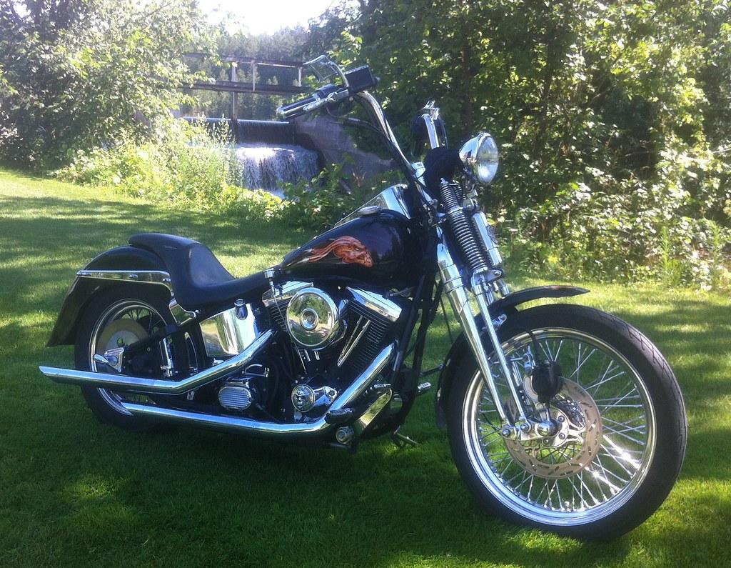 91 Harley Springer Softail