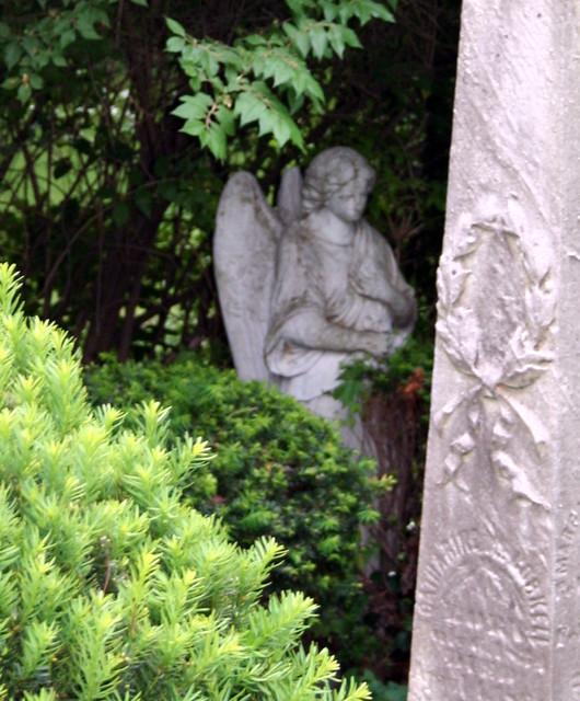 222/365 Memorial Day Angel