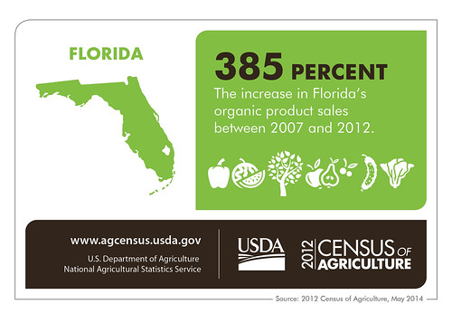 The Sunshine State is seeing spectacular growth in organic crops. Check back next Thursday for more facts from the 2012 Census of Agriculture.