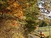 Autumn Rider in the Piedmont