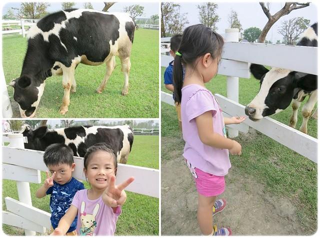 看到牛超興奮的兩人