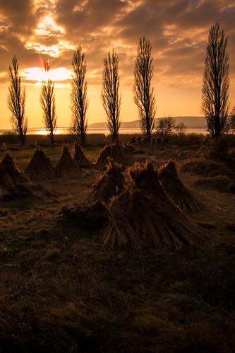 sunset hungary balaton szigliget 0802 05802 fujifilmfinepixs9600 zedspics