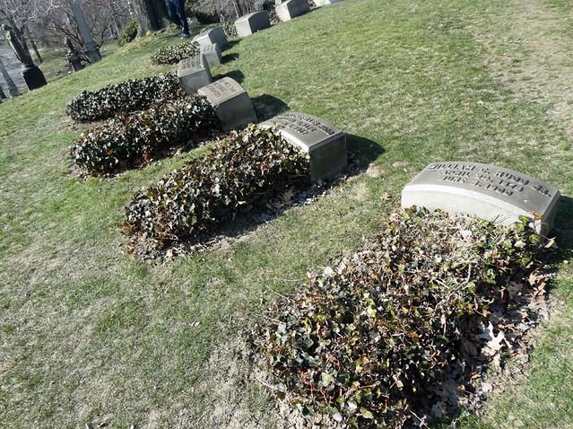 rockefeller family graves