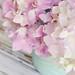 Lavender Hydrangeas by such pretty things