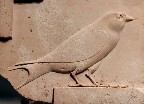Sculptor's Model: A Swallow, 332-30 BCE