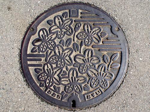 Ōchi,Kagawa , manhole cover (香川県大内町のマンホール)
