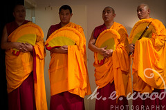 yellow, priest, monk, lama, person,