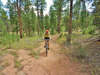 Clare Mountain Biking Buffalo Creek