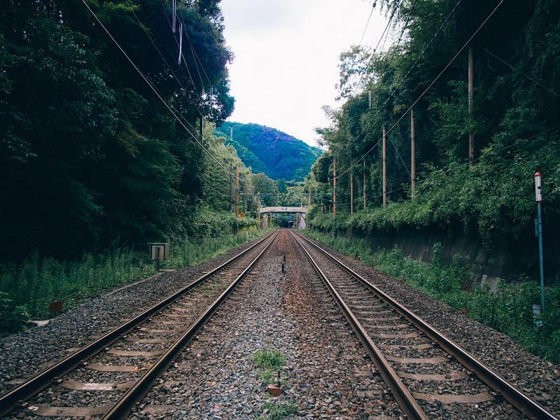 京都單車旅遊攻略 - 日篇 京都單車旅遊攻略 – 日篇 10112404275 ec72361428 c