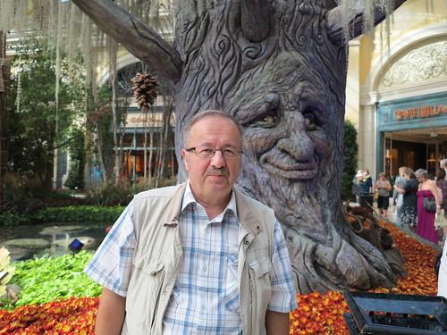 See puu ka rääkis... by elviina