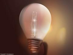 Light Bulb - still life     challenge
