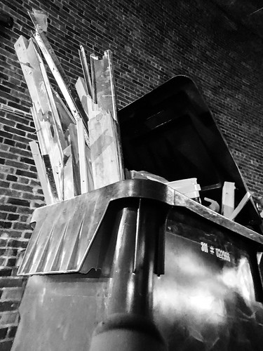 Too long for the bin - #309/365 by PJMixer