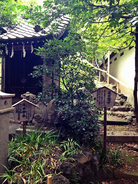 Shrine and Japanese Garden walk