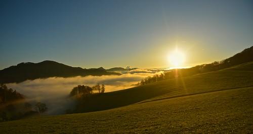 Nebel und Sonne - 2013-11-18
