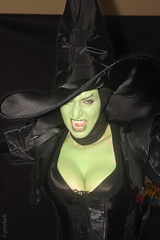 Wizard of oz costume, Wicked Witch of the West