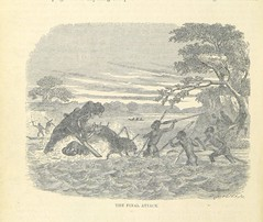 Image taken from page 424 of 'The Natural History of Man; being an account of the manners and customs of the uncivilized races of men ... With new designs by Angas, Danby, Wolf, Zwecker, etc., etc. Engraved by the Brothers Dalziel'