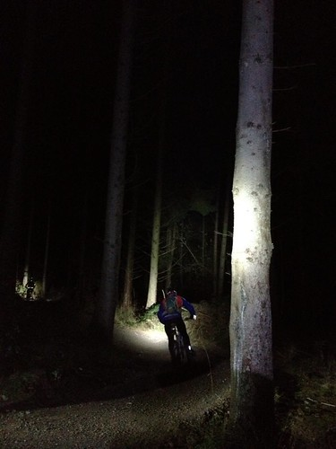Night ride in the Forest of Dean