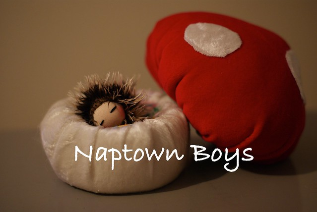 Napper Hedgehog set
