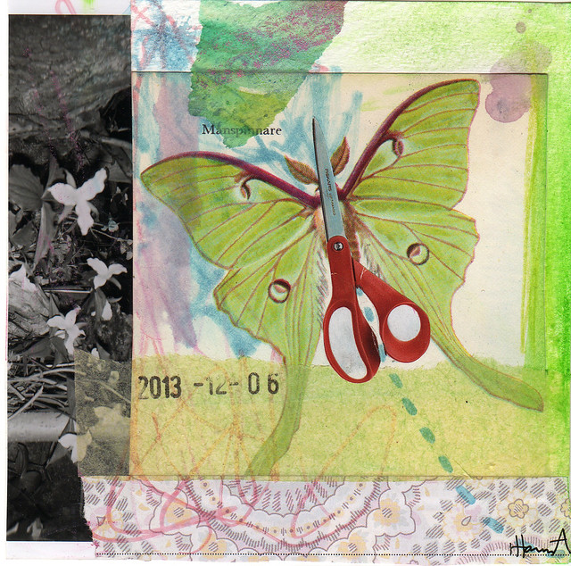 Collage: ButterScissFly  (Copyright Hanna Andersson of www.ihanna.nu)